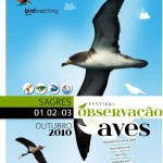 Festival Internacional de Birdwatching de Sagres