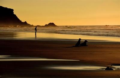 nº01_DiogoCandeias_um olhar pelo horizonte